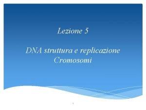Lezione 5 DNA struttura e replicazione Cromosomi 1