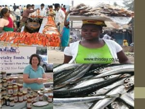 Fish and Shellfish Processing Two Kinds of Fish