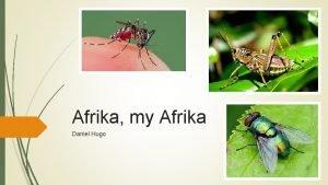 Afrika my Afrika Daniel Hugo Pre Lees Wat
