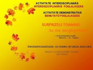 ACTIVITATE INTERDISCIPLINAR INTERDISZCIPLINRIS FOGLALKOZS ACTIVITATE DEMONSTRATIV BEMUTAT FOGLALKOZS