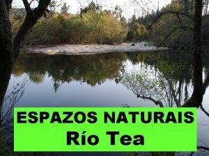 ESPAZOS NATURAIS Ro Tea Abrangue o curso do