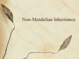 NonMendelian Inheritance Not all traits exhibit simple dominant