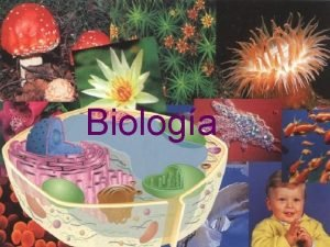 Biologa Qu es Biologa Ciencia de la vida