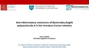 Antiinflammatory mechanism of Bacteroides fragilis polysaccharide A in