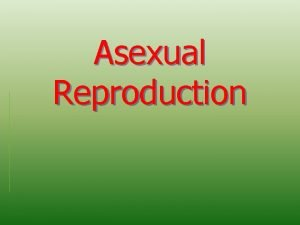 Asexual Reproduction Are you two twins Asexual Reproduction