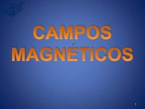 CAMPOS MAGNTICOS 1 MS Magnetita xido de ferro