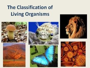 The Classification of Living Organisms What does the