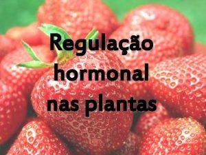 Regulao hormonal nas plantas Uma das caractersticas bsicas