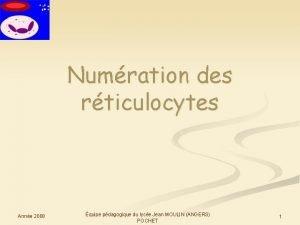 Numration des rticulocytes Anne 2008 quipe pdagogique du