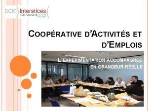COOPRATIVE DACTIVITS ET DEMPLOIS LEXPRIMENTATION ACCOMPAGNE EN GRANDEUR