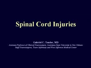 Spinal Cord Injuries Gabriel C Tender MD Assistant