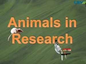 Animals in Research 1 Objectives 1 To examine