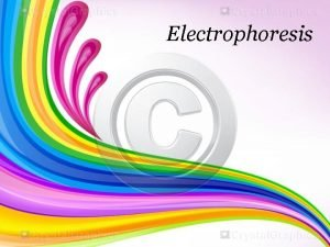 Electrophoresis Electrophoresis is one of the most important
