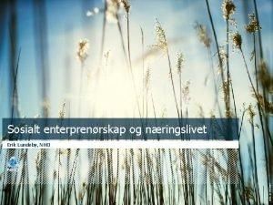 Sosialt enterprenrskap og nringslivet Foto Jo Michael Erik