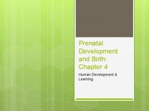 Prenatal Development and Birth Chapter 4 Human Development