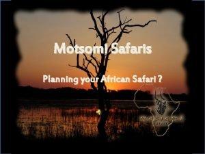 Motsomi Safaris Planning your African Safari Welcome to