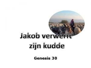Jakob verwerft zijn kudde Genesis 30 Genesis 30
