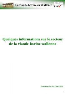 La viande bovine en Wallonie Quelques informations sur