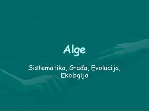 Alge Sistematika Graa Evolucija Ekologija Alge Zajednike osobine