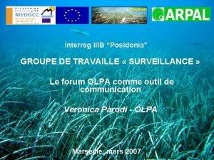 Posidonia Interreg IIIB Posidonia GROUPE DE TRAVAILLE SURVEILLANCE