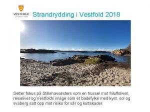Strandrydding i Vestfold 2018 Setter fokus p Stillehavssters