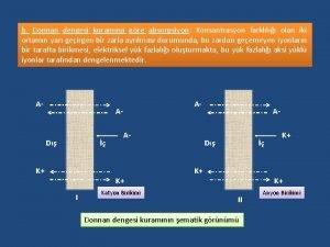 b Donnan dengesi kuramna gre absorpsiyon Konsantrasyon farkll
