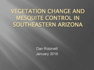 VEGETATION CHANGE AND MESQUITE CONTROL IN SOUTHEASTERN ARIZONA