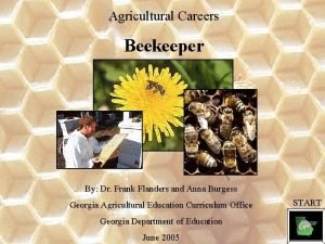 Agricultural Careers Beekeeper By Dr Frank Flanders and