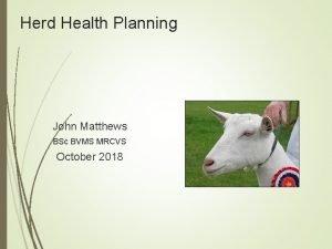 Herd Health Planning John Matthews BSc BVMS MRCVS