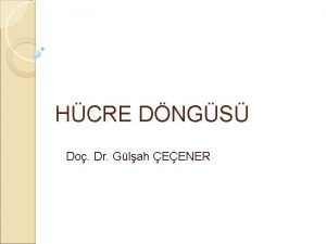 HCRE DNGS Do Dr Glah EENER Hcre dngs