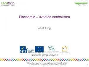 Biochemie vod do anabolismu Josef Trgl Modernizace vuky