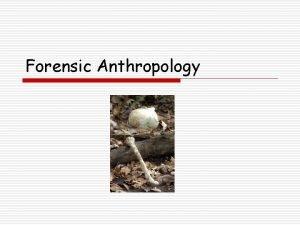 Forensic Anthropology Forensic Anthropology What is Forensic Anthropology