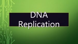 DNA Replication DNA Replication is the process by