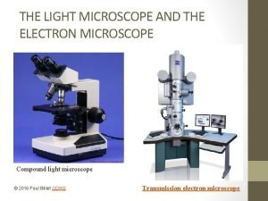 THE LIGHT MICROSCOPE AND THE ELECTRON MICROSCOPE Compound