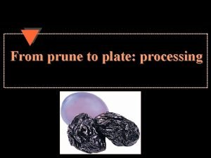 From prune to plate processing Processing 28 processing