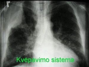 Kvpavimo sistema Kvpavimo reikm Kvpavimo organuose vyksta duj