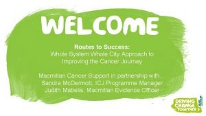 Routes to Success Whole System Whole City Approach