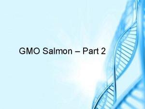 GMO Salmon Part 2 Aqu Advantage Salmon by