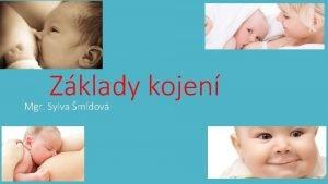 Zklady kojen Mgr Sylva mdov https www youtube