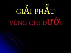 GII PHU VNG CHI DI XNG CHI DI