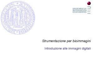 Strumentazione per bioimmagini Introduzione alle immagini digitali Introduzione