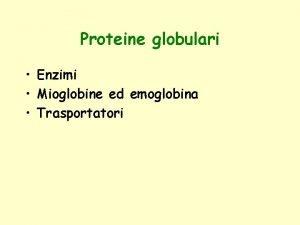 Proteine globulari Enzimi Mioglobine ed emoglobina Trasportatori Enzimi