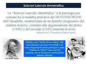 Sclerosi Laterale Amiotrofica La Sclerosi Laterale Amiotrofica Amiotrofica