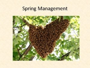 Spring Management Things to Consider Before We Begin