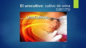 El urocultivo cultivo de orina Dr Antonio D