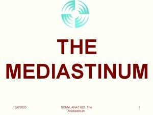THE MEDIASTINUM 1262020 SCNM ANAT 603 The Mediastinum