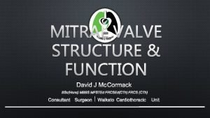 MITRAL VALVE STRUCTURE FUNCTION DAVID J MCCORMACK BSCHONS