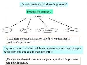 Qu determina la produccin primaria Produccin primaria requiere