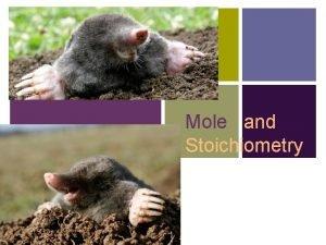 Mole and Stoichiometry Measuring Matter n A mole