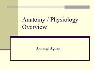 Anatomy Physiology Overview Skeletal System Skeletal System n